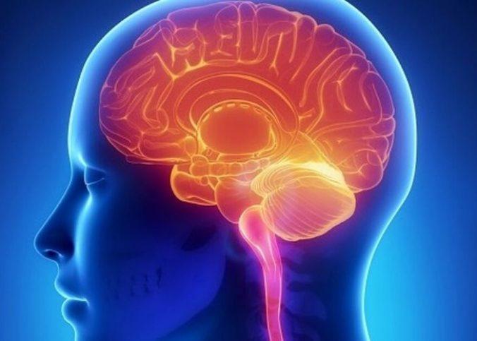 comment stimuler son cerveau