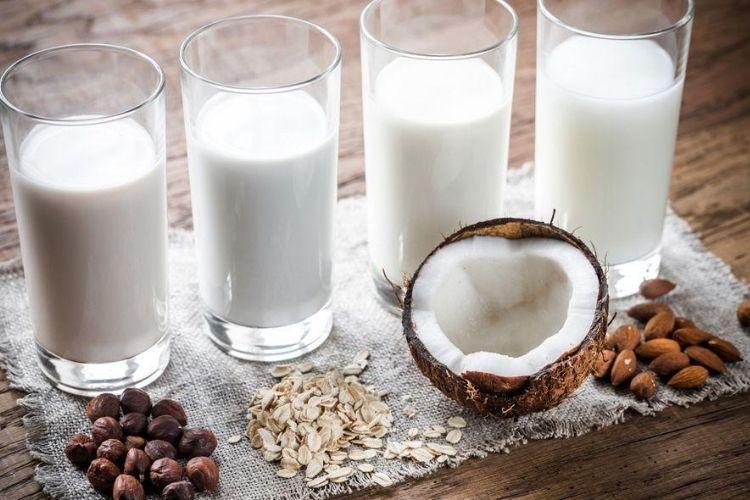 quel est le meilleur lait végétal