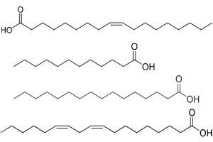acide linoleique bienfaits